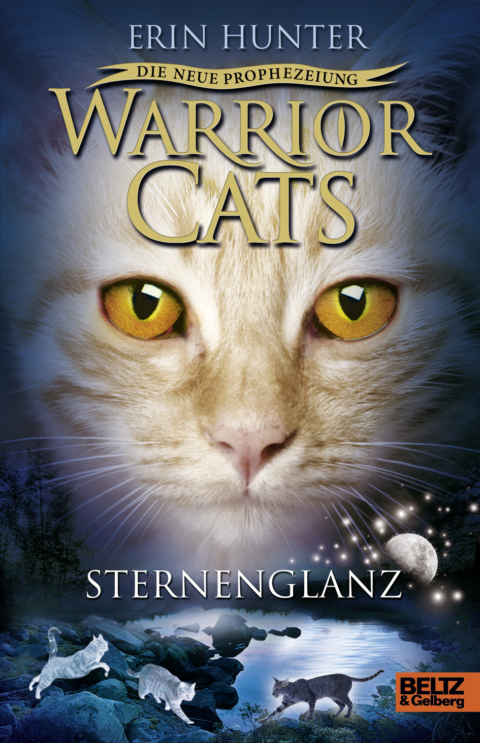 Sternenglanz Warrior Cats