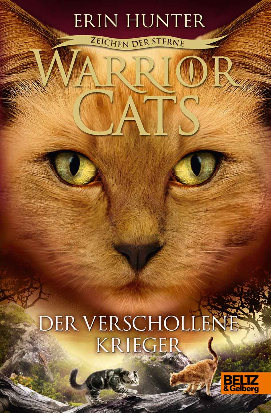 Warrior Cats Der Verschollene Krieger