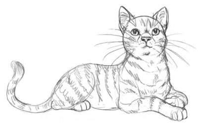 Frischbeute in Blattgrüne und Blattfall 2018 » Warrior Cats