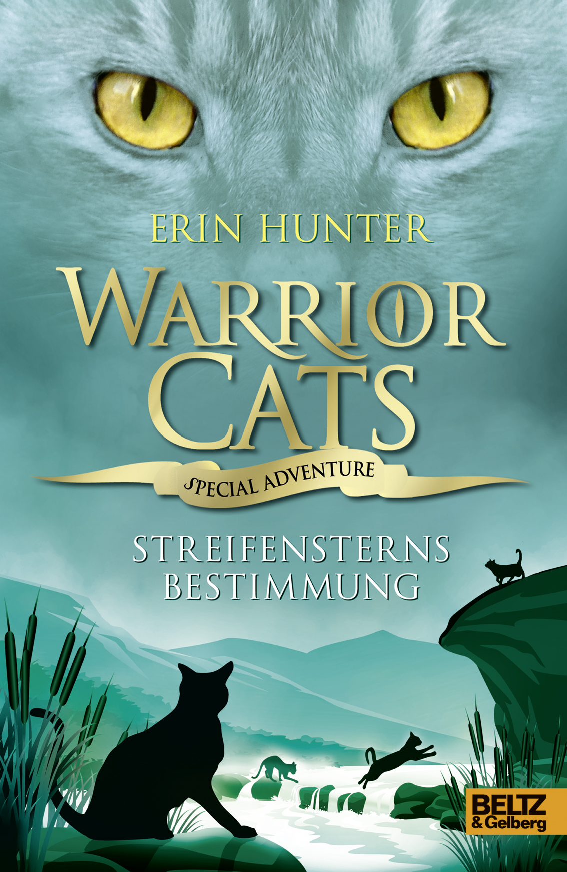 Warrior Cats Clan Erstellen