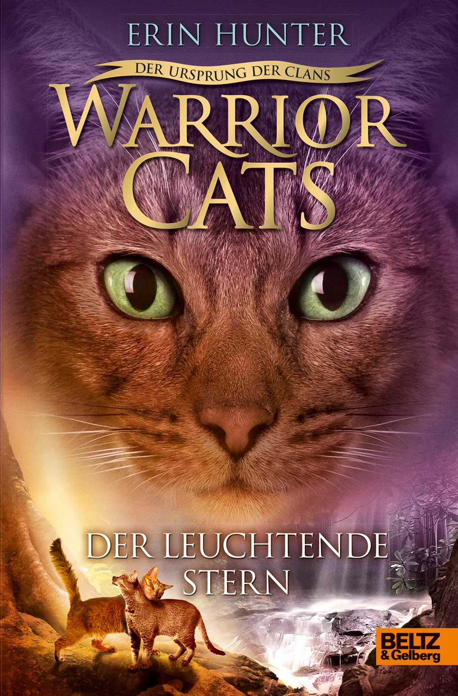 Warrior Cats Dawn Of The Clans Book