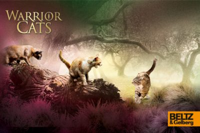 Warrior Cats Sammel Karten