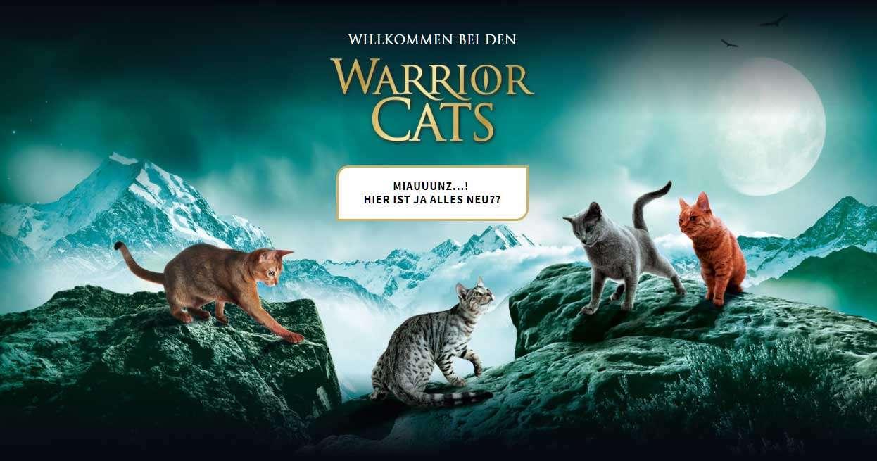 Gibt Es Warrior Cats Als Film