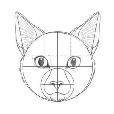 Zeichne nun die Wangen. Du kannst mit ihrer Form spielen (hager, etwas voller, eckig oder rund …), aber auch mit ihrem Fell (lang- oder kurzhaarig). Bei längerem Fell solltest du über den Kopf hinaus zeichnen, um dessen Fülle anzudeuten.