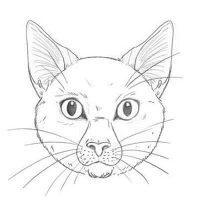 Mit Haaren an Augen, Nase, Wangen und Stirn vollendest du deinen Katzenkopf. Versuche dabei, die Fellrichtung bei jedem Strich beizubehalten … oder eben nicht! Dann bekommt die Katze ein zotteliges, schmutziges Fell!