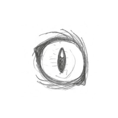 Im grellen Licht oder bei aggressiver Stimmung wird die Pupille länglich und schmal. Eine Pupille also, die du am besten verwendest, wenn du deine Kriegerkatze im Kampf zeigen willst. Tipp: Vergiss beim Ausmalen der Pupille nicht den ausgesparten weißen Kreis, um den Lichteinfall zu simulieren, auch nicht bei einer so schmalen Pupille.