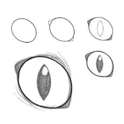 Ovale Augen kommen meist bei braven Hauskätzchen vor, aber auch bei einigen erwachsenen Kriegern. Diesmal zeichnest du keinen Kreis, sondern ein Oval, das etwas schräg gestellt wird. Ansonsten gehst du hier genauso vor wie bei den runden Augen.