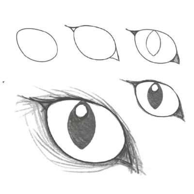 Bei orientalischen Katzenrassen findest du eine weitere Variante. Die Augen sind oval und liegen etwas tiefer, was sich mit langen »Wimpern« an der Außenseite des Auges betonen lässt. Zeichne zunächst ein eiförmiges Auge. Der schmalste Punkt an der Außenseite ist etwas zugespitzt. Auch das Dreieck an der Innenseite ist spitzer. An der Außenseite ist es ein kleines, spitzes, verlängertes Dreieck (die »Wimpern«). Ansonsten kannst du auf dieselbe Weise vorgehen wie bei runden oder ovalen Augen.
