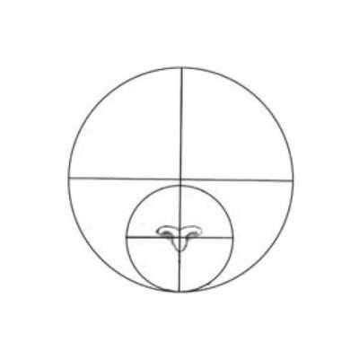 Skizziere die Nase genau in der Mitte des kleinen Kreises. Variieren erwünscht: Um verschiedene Effekte zu erzielen, kannst du die Nase höher oder tiefer ansetzen. Experimentiere einfach drauflos!